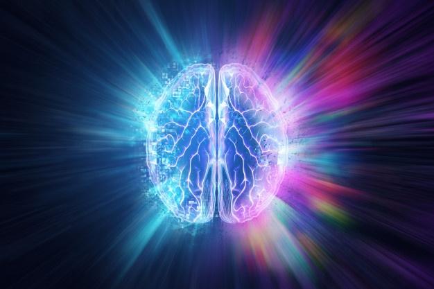 Celostni razvoj otroških možganov je pomemben element otroškega razvoja