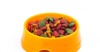 kvalitetna hrana za pse